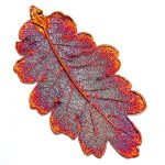 Huge Real Leaf deeped in copper Sterling Silver Pendant