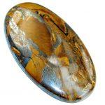 Amazing Golden Tigers's Eye 55.5ct Stone