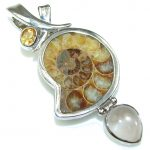 Fabulous! Brown Shell Ammonite Fossil Sterling Silver Pendant